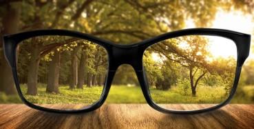 glasses-in-focus-1024x521